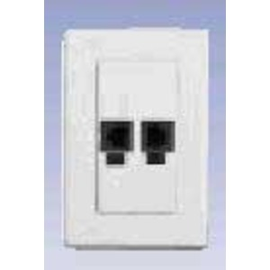 AX100344 2-PORT PS5E BIX DVO FLUSH WHITE