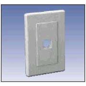 A0405257 QNE4PA1F1103 FLSH 1PORT WHITE