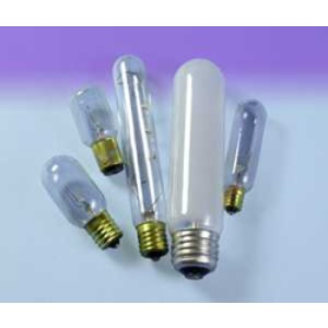 25T6.5   120V LAMP