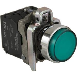 XB4BW13G5 GRN EXTND HEAD PB W/120V LED &