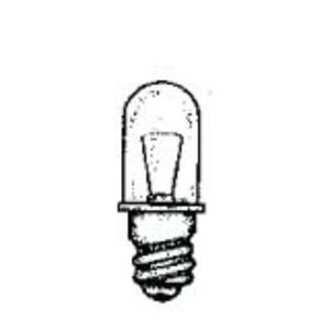 46    LAMP